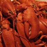 Maine Foodie Towns