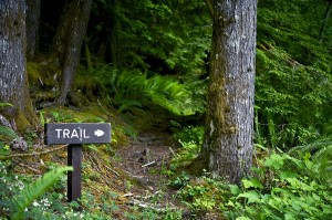 best Maine hiking trails