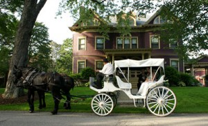 Horse Drawn Carriage at a Maine Bed and Breakfast