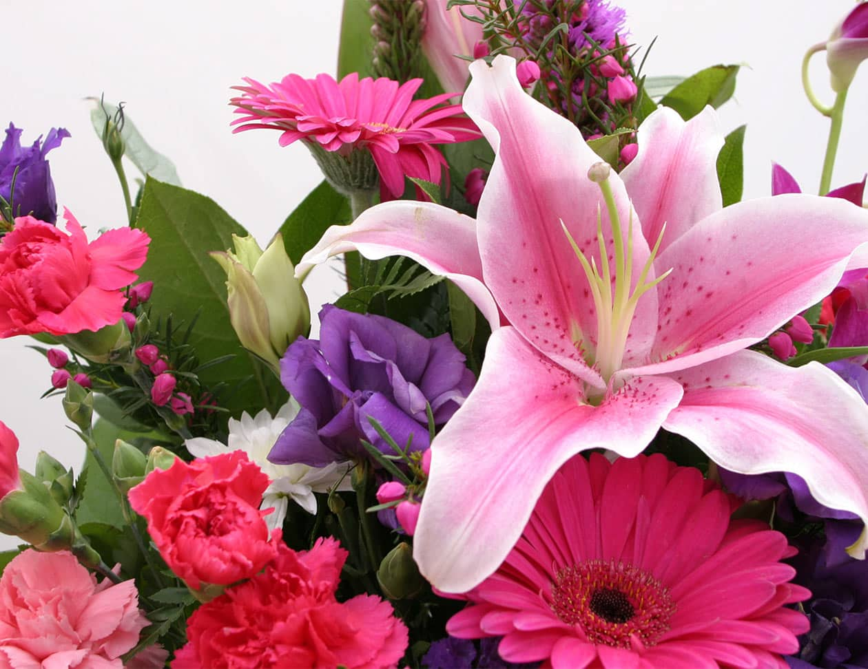 Bouquet of colorful pink flowers