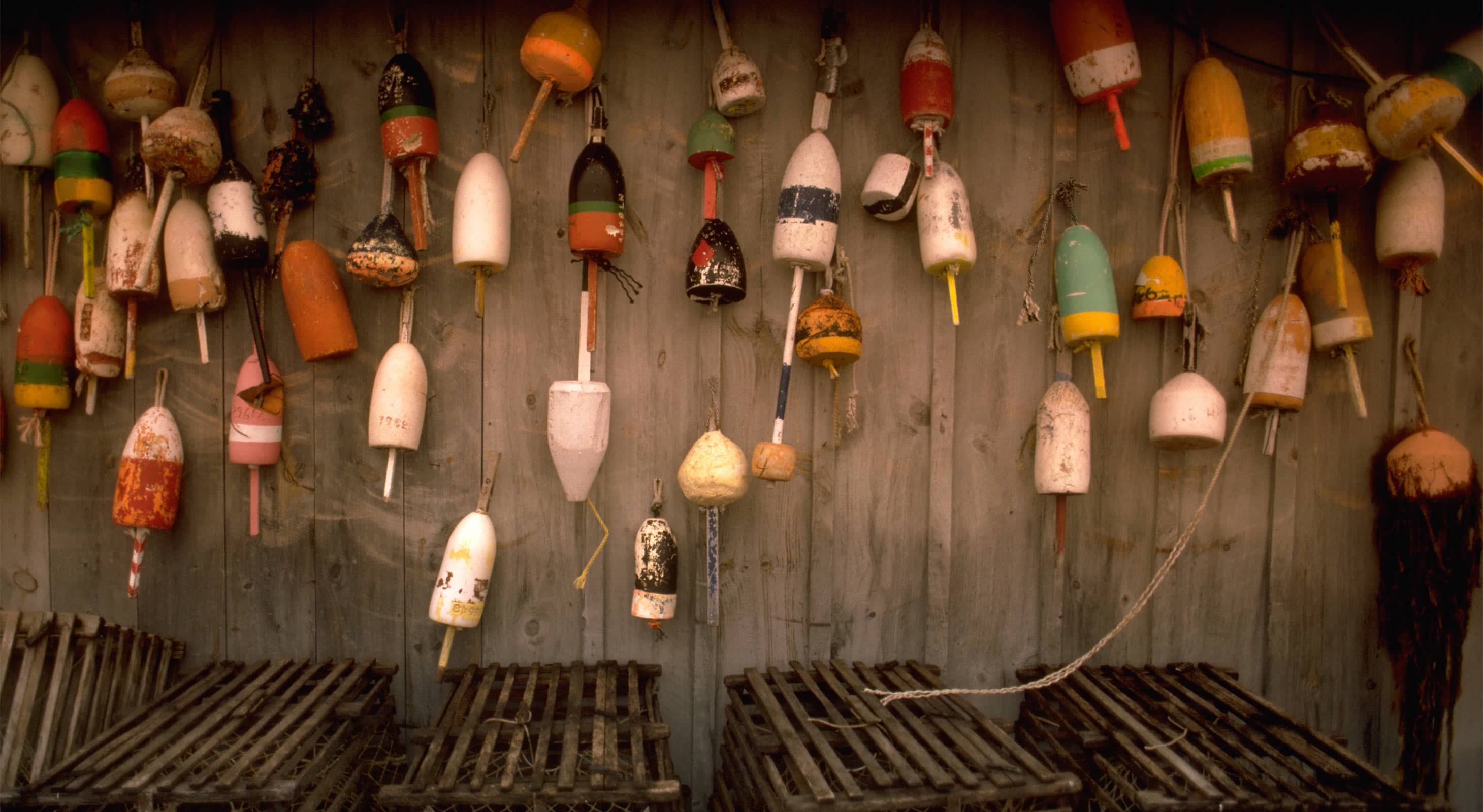 Wall of Lobster Buoys