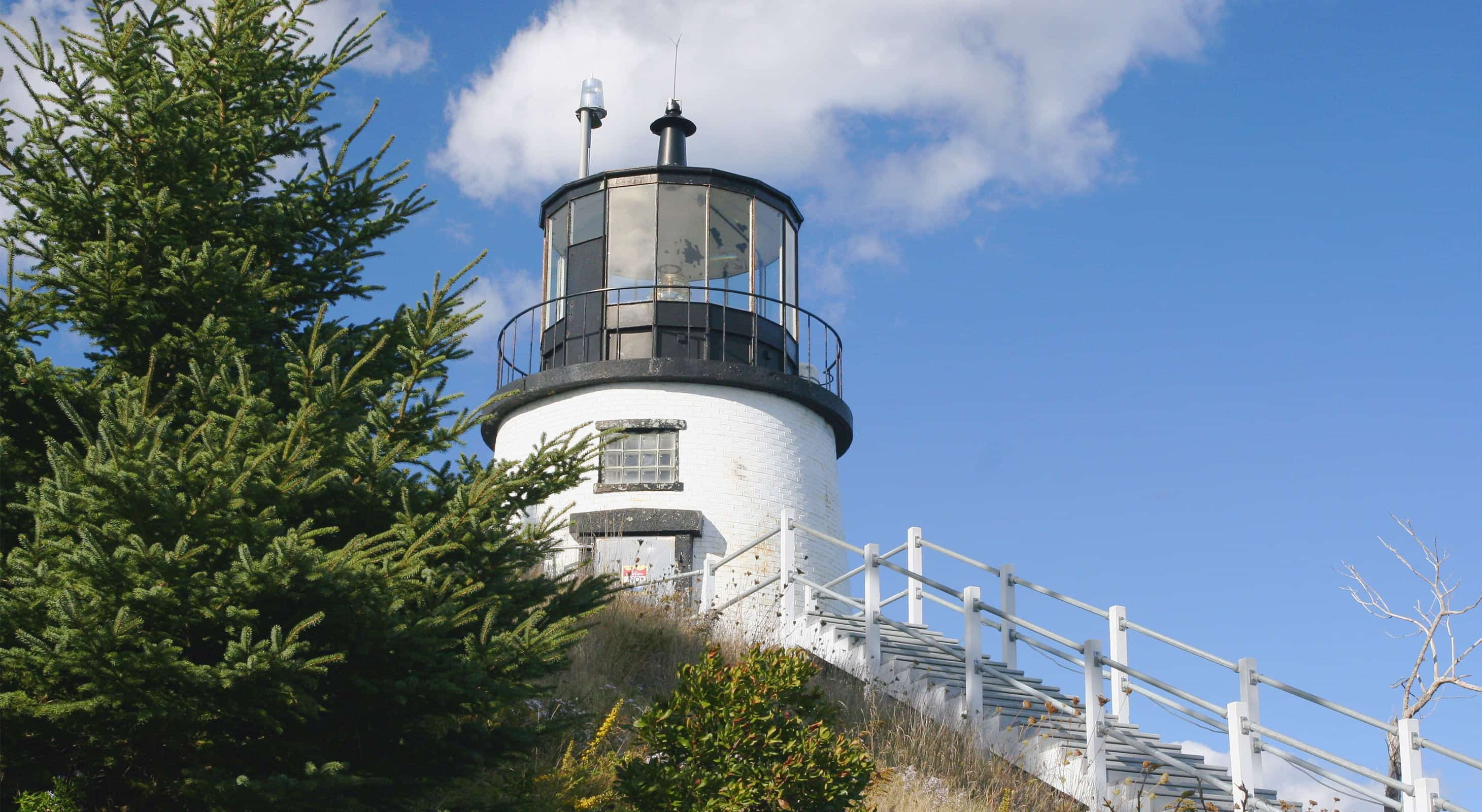 White lighthouse with black cap against blue sky and pine trees.