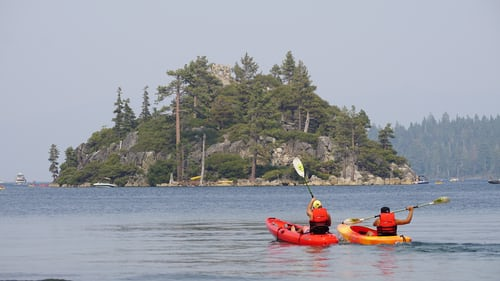 One red and one yellow kayak with paddlers on water with a rugged tree-covered island in distance.