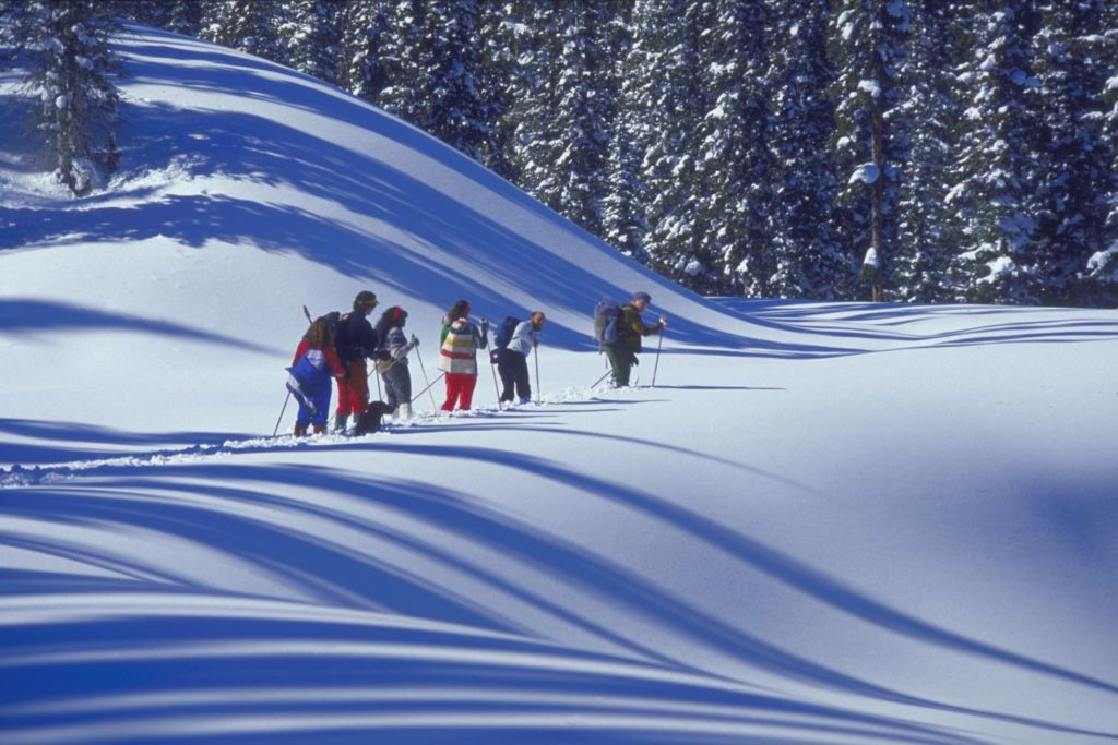 Group of friends cross country skiing over rolling snow-covered ground.