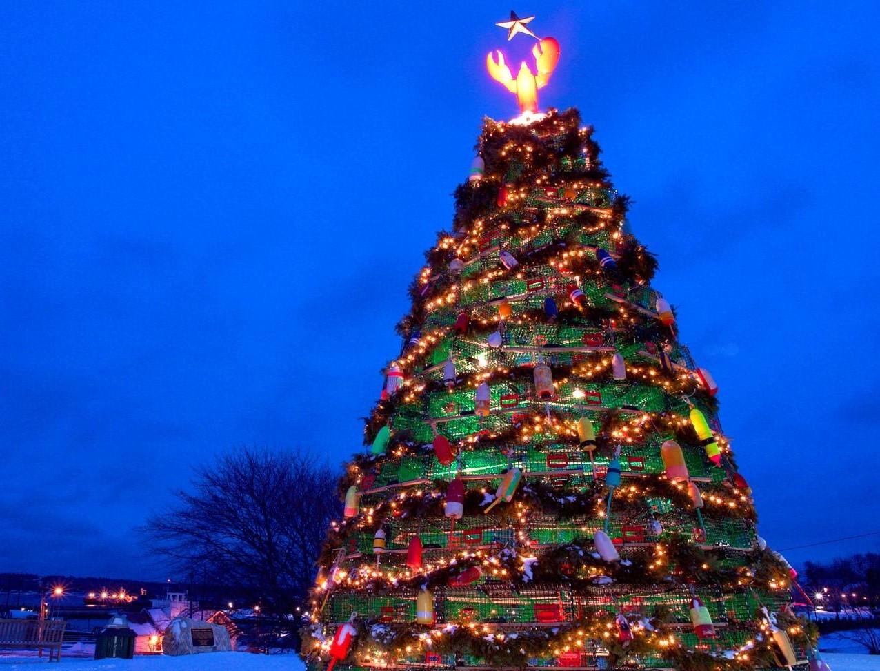 Lighted Christmas tree against a dark blue sky